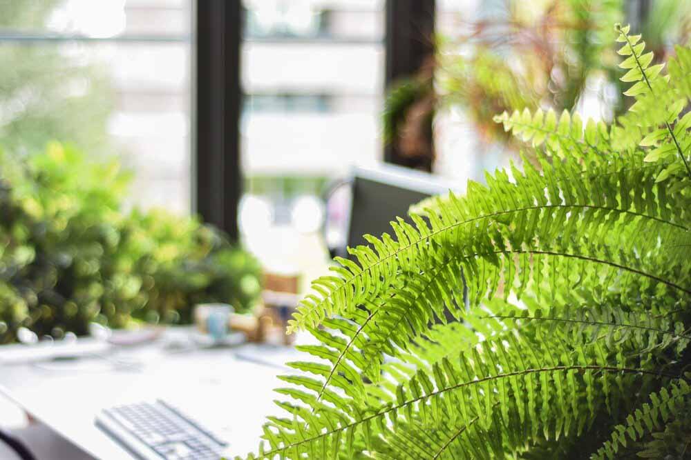 Enfocarse en la sostenibilidad ayudará a las empresas a la recuperación Post-Covid