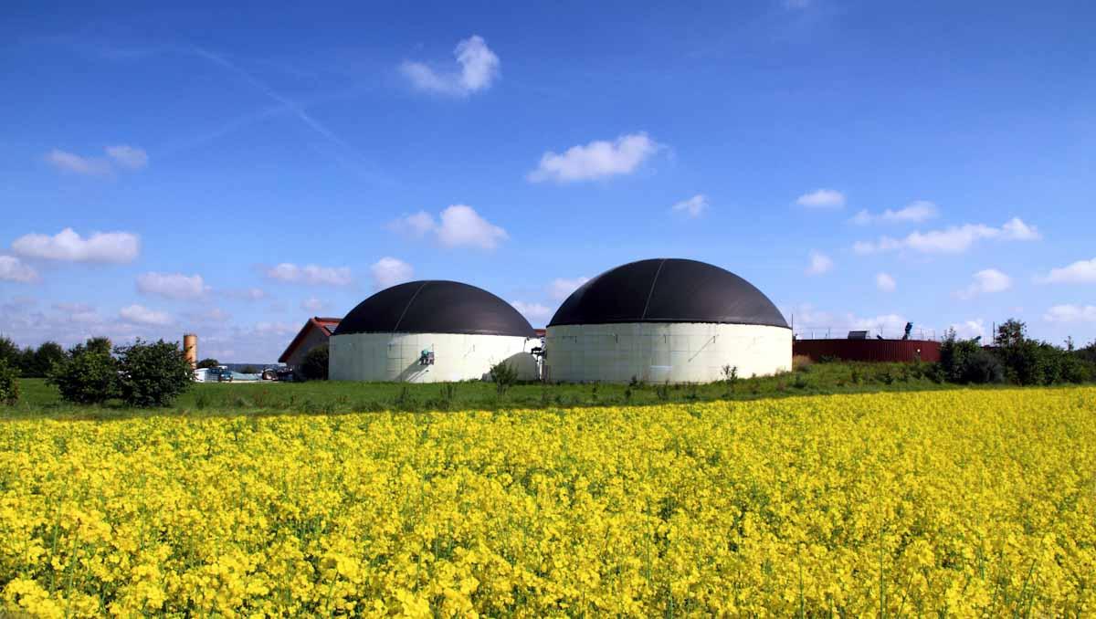 Las industrias de base biológica serán clave para la recuperación europea