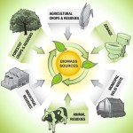 An Introduction to Biomass Energy
