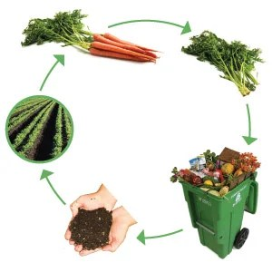 compost_strategies