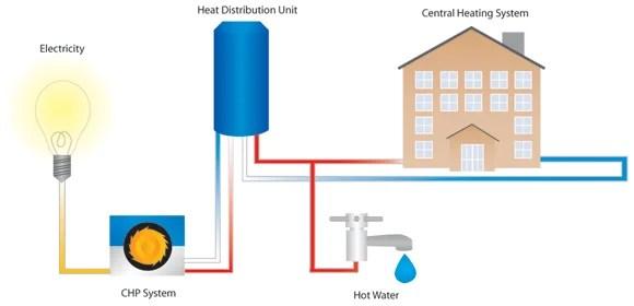 Biomass Cogeneration Systems