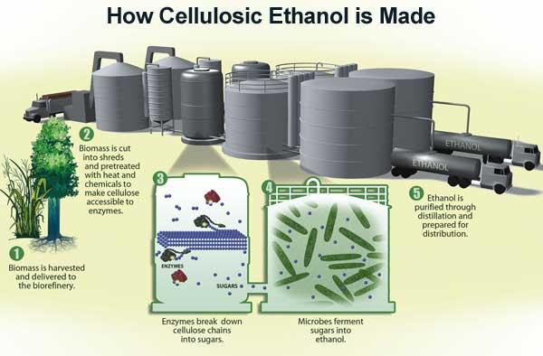 Ethanol_Manufacture