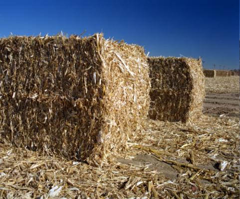 agricultural-wastes