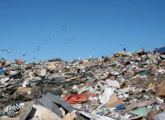waste-management-energy