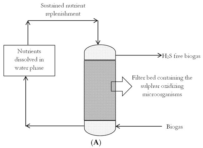 biogasdesulphurization