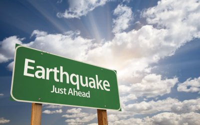 Earth fields and earthquakes
