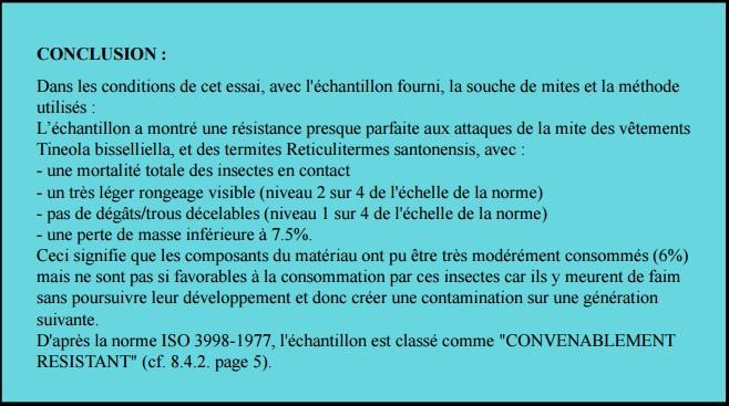 certificatmite termite conclusion