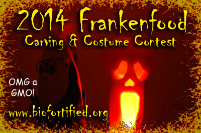 2014 Frankenfood Carving and Costume Contest