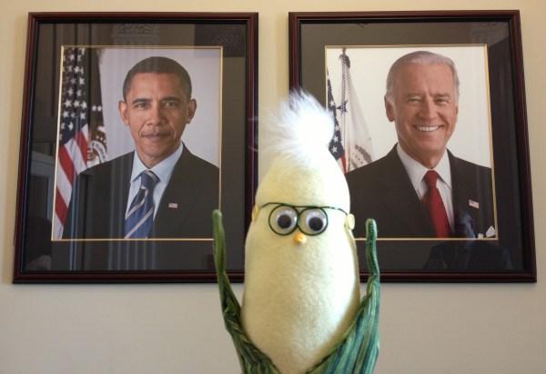 Frank president White House