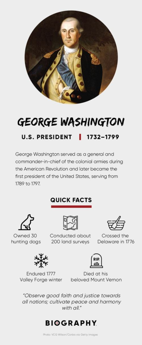 small resolution of George Washington - Facts