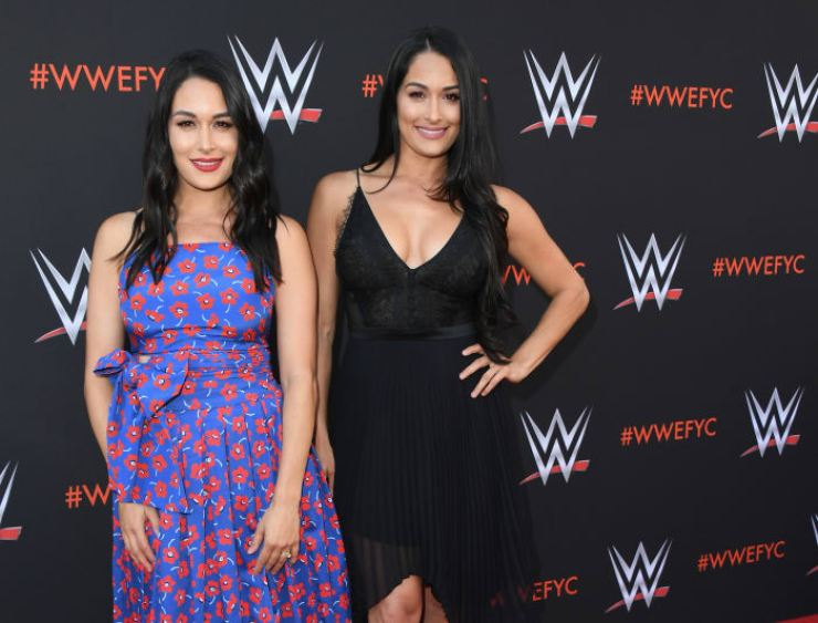 Brie and Nikki Bella in 2018