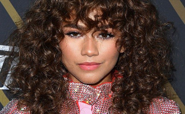Zendaya Age Family Facts Biography