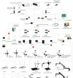 bsm500l stereo zoom microscope [ 1024 x 1340 Pixel ]