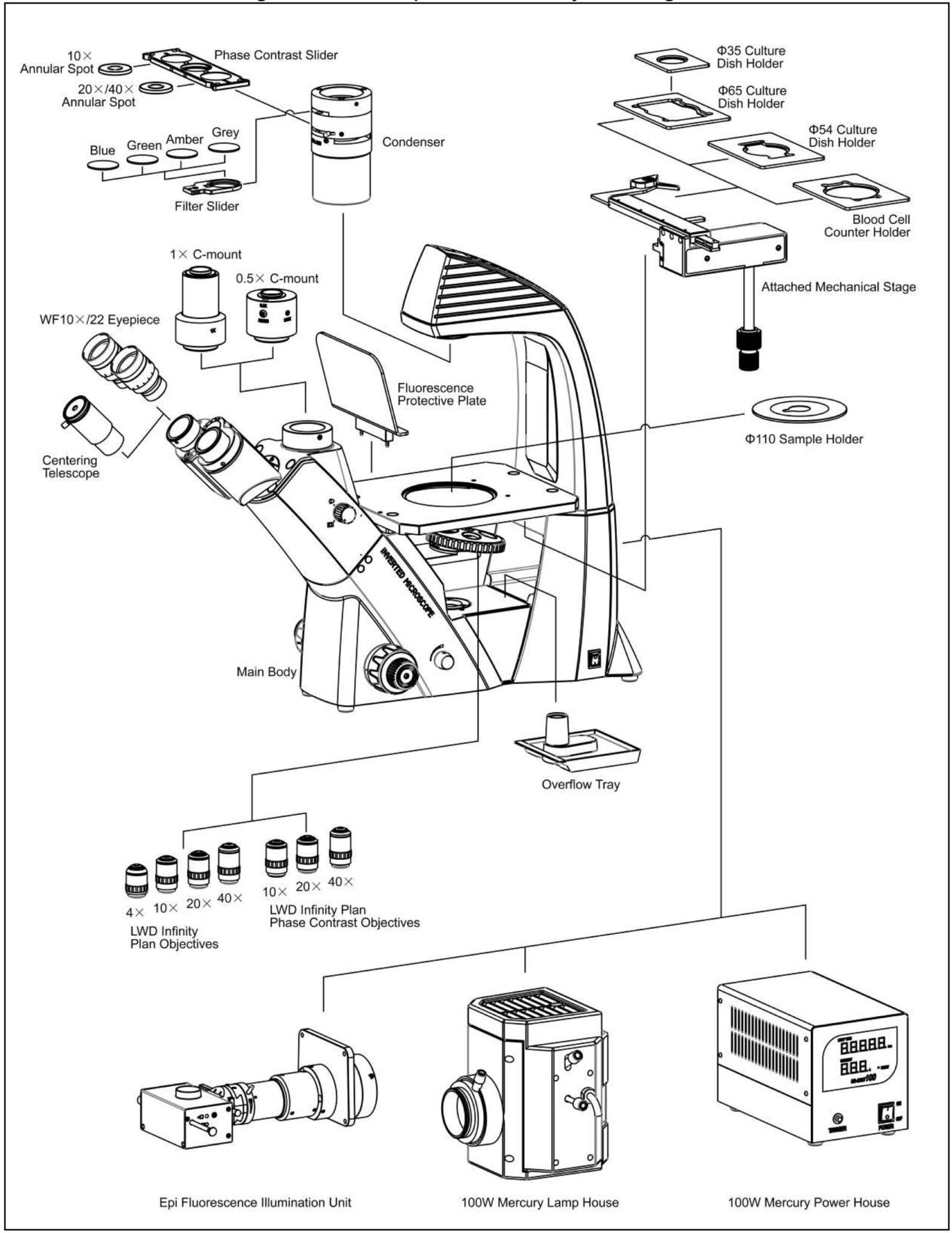 BIM640FL Inverted Biological Microscope