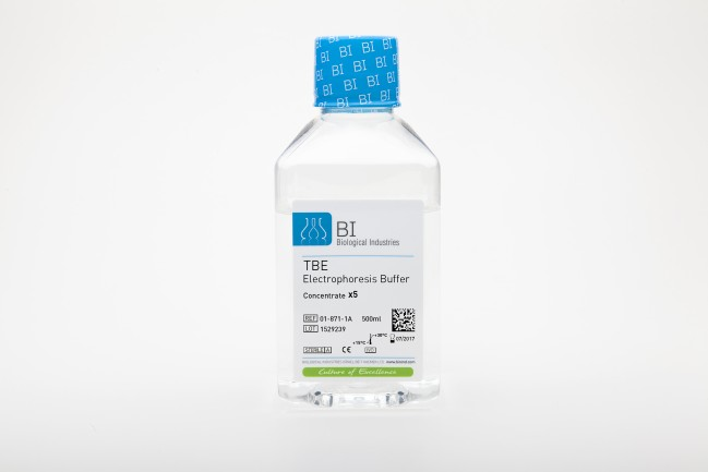 TBE Buffer for Agarose Gel Electrophoresis