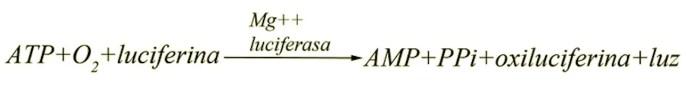 BIO-ATP2G- fórmulaATP