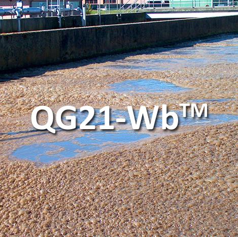 ATP-Bulking-QG21-Wb