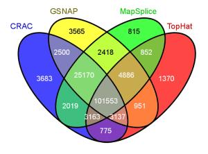 Venn diagrams: a visualization nightmare! – IRIC's