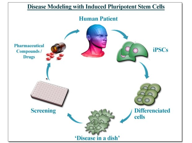 iPSC (iPS Cell) Disease Modeling