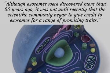 Exosome Companies