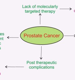 prostate cancer at a glance represents some basic facts around current prostate cancer treatment approach its limitations and its associated post  [ 1290 x 798 Pixel ]