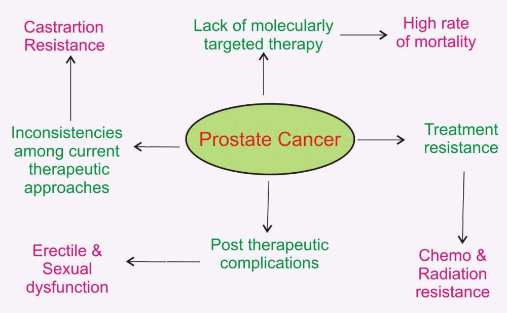 medium resolution of prostate cancer at a glance represents some basic facts around current prostate cancer treatment approach its limitations and its associated post