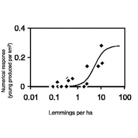 Predator-Prey Relationship Dynamics