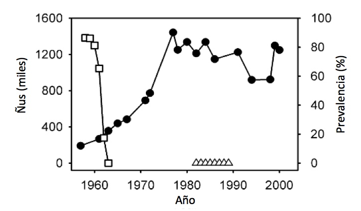 Serengeti Wildebeest Population Regulation