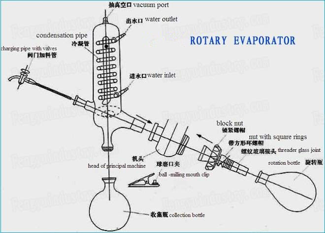 20L lab-scale rotovap/rotary evaporator With Vertical