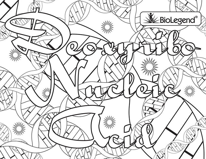 Zsksydny Coloring Pages: 33 Dna The Double Helix Coloring