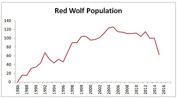 Red wolf population graph