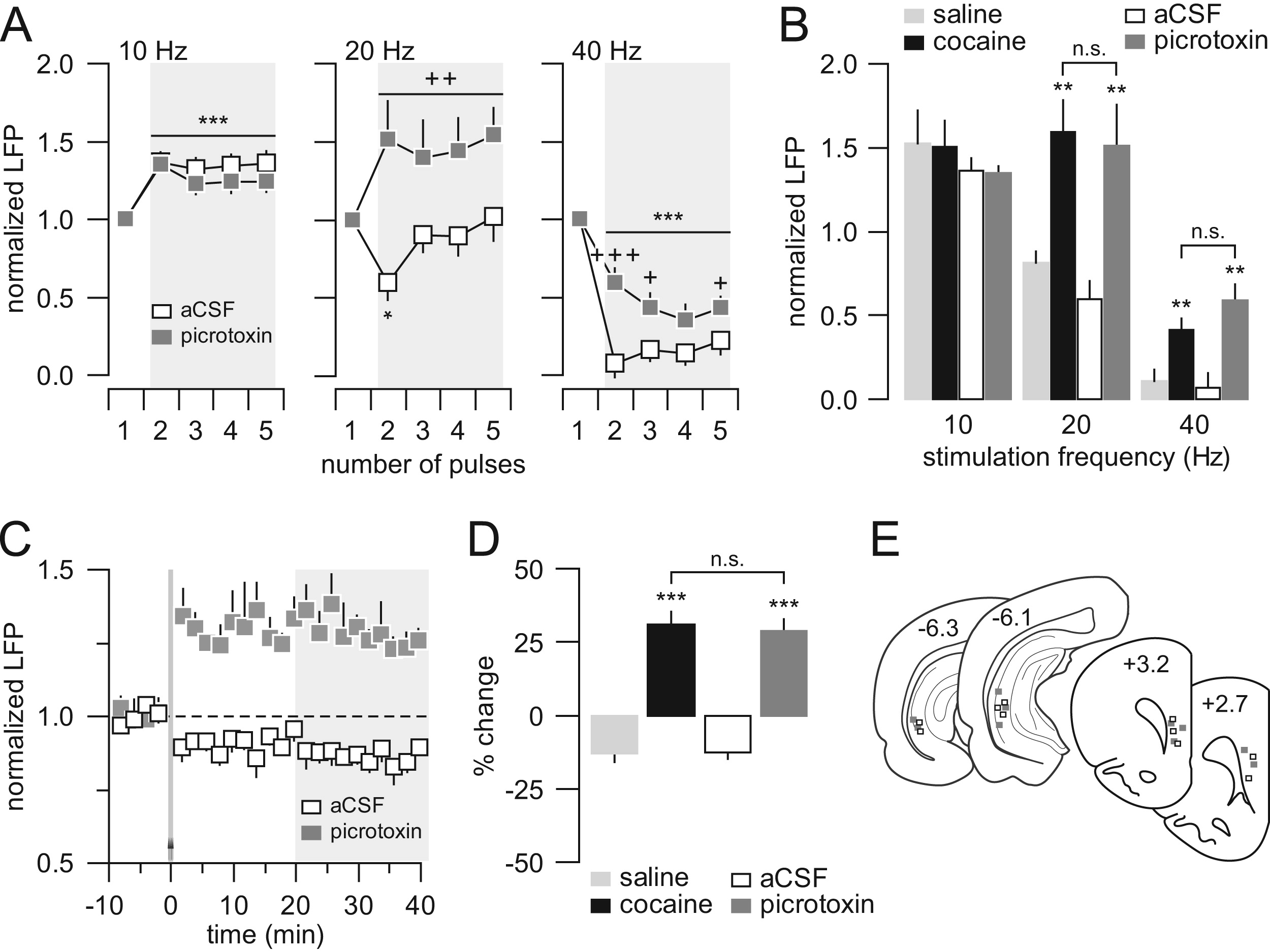 Developmental Disruption Of Gamma Aminobutyric Acid Function In The Medial Prefrontal Cortex By