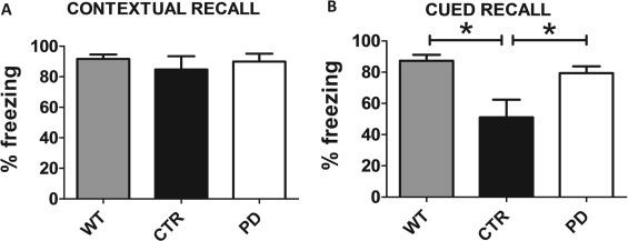 12/15-Lipoxygenase Inhibition Reverses Cognitive