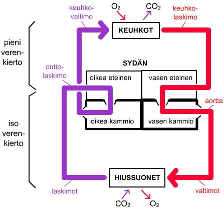 Kaasujen Vaihto