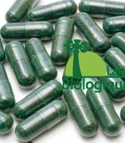 La spiruline est une algue spiralée qui existe depuis 3 milliards d'années. Faible en calorie, elle contient une grande quantité de protéines, d'antioxydants (caroténoïdes, phycocyanine) et d'acide gamma-linolénique (issu de la famille des oméga-6).