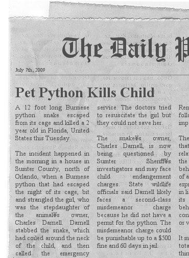 Are Exotic Pets a Good Idea