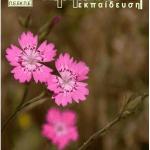 """8 τεύχος περιοδικού """"Για την Περιβαλλοντική Εκπαίδευση"""""""