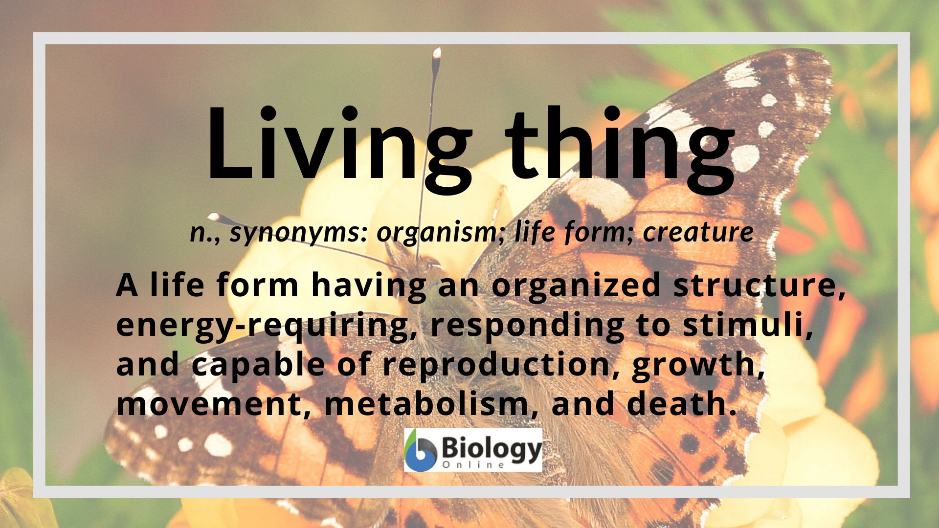 Living Thing Definition And Examples
