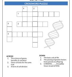 Molecular genetics - Definition and Examples - Biology Online Dictionary [ 1056 x 768 Pixel ]