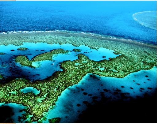 Lokasi ekosistem karang
