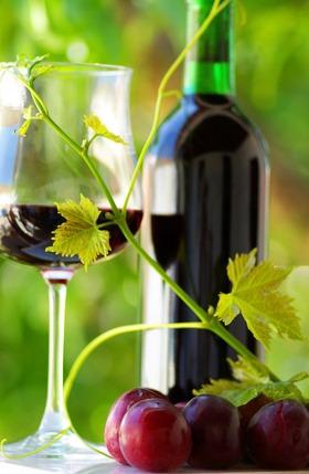 Etapa exitosa para el vino ecológico