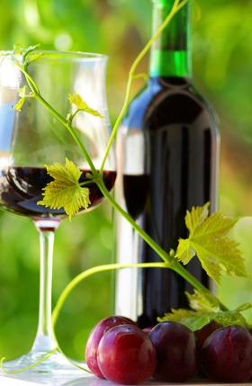 Normas técnicas de elaboración de vino ecológico