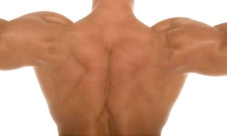 Ejercicios para desarrollar tu espalda