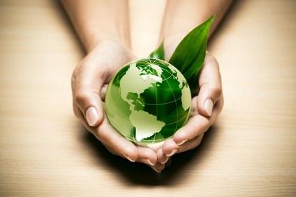 Productos orgánicos: salud y belleza para ti y el planeta