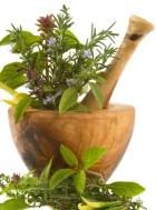 Aprovecha en tu cocina las hierbas medicinales