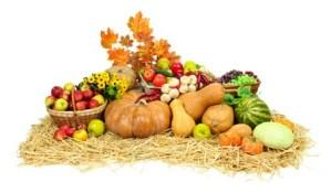 Platillos con verduras de otoño e invierno