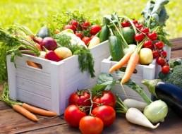 Consejos para Llevar una Dieta Vegetariana
