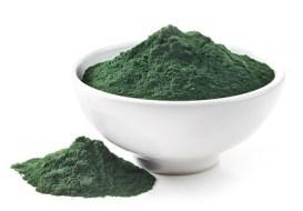 Chlorella, para Nutrir y Desintoxicar tu Organismo