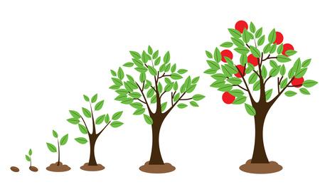 La agricultura ecológica será prioridad en el plan nacional de desarrollo rural