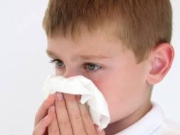 Alergia a los gatos, polen, polvo, etc.: como erradicarla de tu vida
